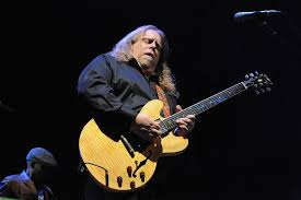 warren haynes guitar